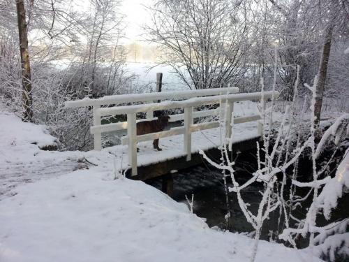 Winter 2012-2